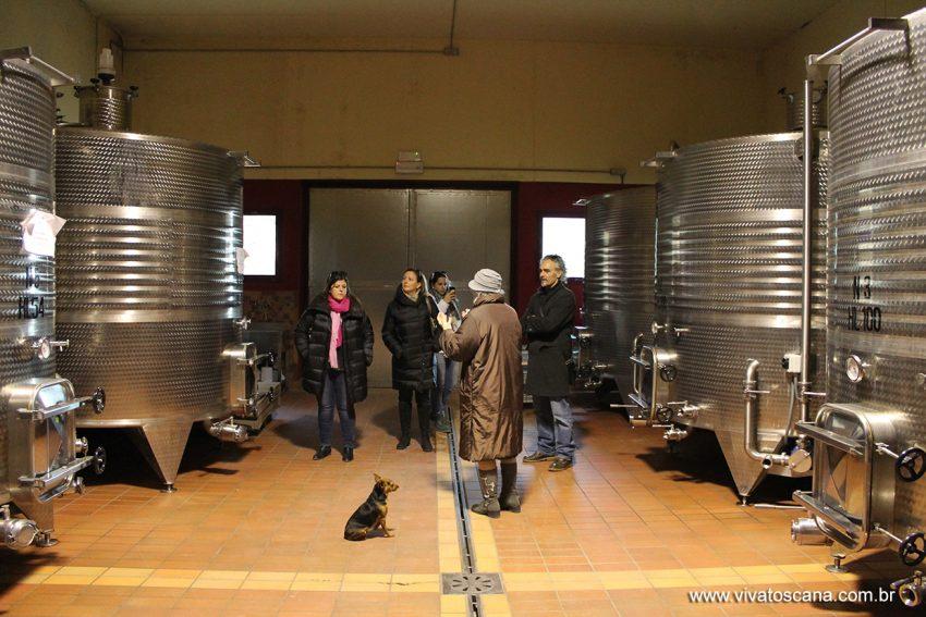 winetour-brunello-di-montalcino-05