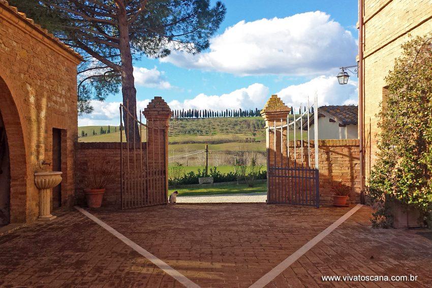 winetour-brunello-di-montalcino-07