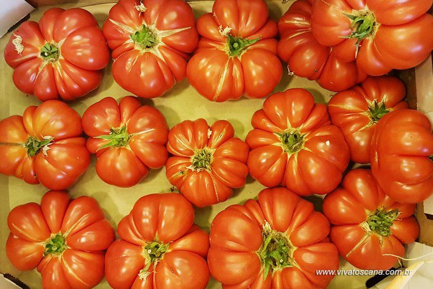 pomodori-fiorentini