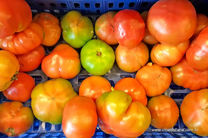 pomodori-per-insalata